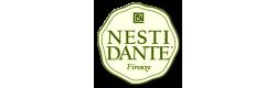 Nesti Dante, Италия